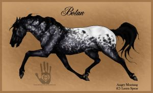 Botan Ref Sheet by RebeccaStapp