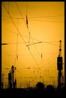 Spider's Air Raid by mrgraphicsguy