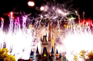 Fireworks over Magic Kingdom by wmandra