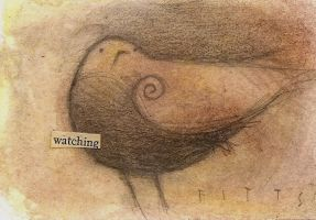 Bird Observing ACEO by SethFitts