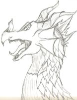 Dragon Head by Ddogg2287