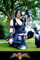 Shura Soul Calibur IV - swords by sonialeong