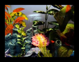 fish.tank by fish-paste