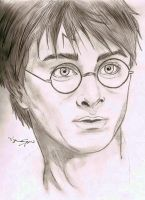 Harry Potter by Volky