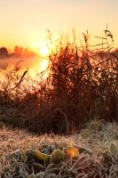Early Autumn Morning by DeingeL