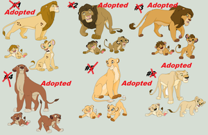 Lion Adoption Males and Females - Closed by AnarsAdoptionAgency