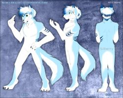 Reference: Shanrai Anthro by Silberry