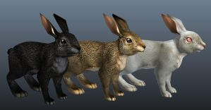 Guild Wars 2 Rabbits by goosezilla