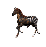 Fantasy Horse Png Stock 2 by Direwrath