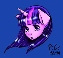 Twilight Sparkle by PiGiXD