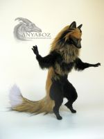 Golden Coon Fox Room Guardian by AnyaBoz