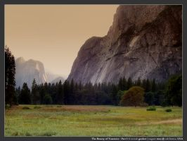 The Beauty of Yosemite -Part I by micahgoulart