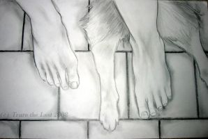 Feet and Paws by Truro