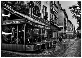 Old Paris 002 - BW by MarcoFiorentini