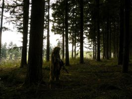 ghillie suit by taxusbacata