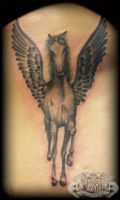Pegasus by state-of-art-tattoo
