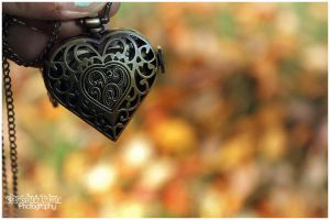 Autumn Heart 2 by Clerdy