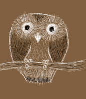 Sketchy Owl by Blue-Koi