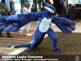 Shadow Lugia Costume -2010 by CanineHybrid