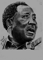 Muddy Waters by Mohamed Ziou by MoZiou