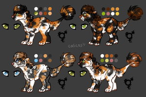 Calico Micros by kiamara-adopts