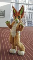 Kiwi Fursuit by Kiweeroo