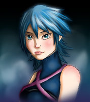 Kingdom Hearts: Within the Darkness by Kirabook