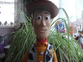 Woody :D by MaskedAngel95
