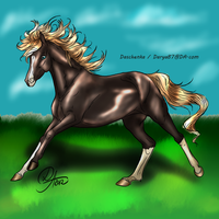 Seth Aaron Saverio- drawing for Adoption by SweetStreamStables