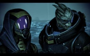 ME3 Garrus and Tali 5 by chicksaw2002