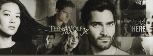 Teen Wolf Cover by CansuAkn