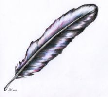 colorful feather by Fynya