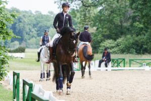 Lusitano Dressage Training Canter Stretching Stock by LuDa-Stock