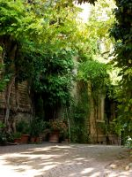 Green Alley by mojomagmajo
