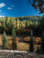 Fall on the Flume Trail by MartinGollery