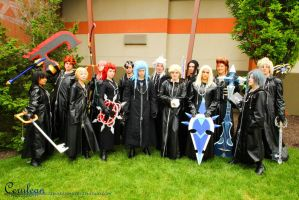 The Organization -Kingdom Hearts by fruba-kyo-lover1