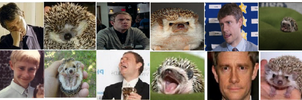 Martin Hedgehog Freeman by mcvayb