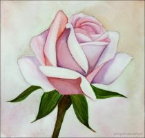 Rose-(watercolor) by GSinghh
