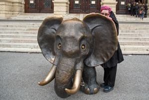 The Wife and the Elephant by attomanen