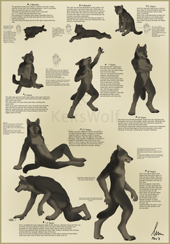 Werewolf - 9 Stages of Life by KeksWolf