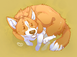 Welsh Corgi by MissAntura