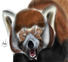Red Panda Smile by Andrew-Stealfh