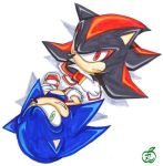 sonic and shadow_just above by maruringo