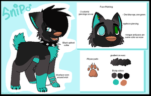 Snip Reference Sheet 2012 by Sliced-Penguin