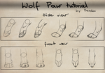 Wolf paw tutorial by Rizuuki
