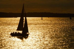 Sailing gold by Austinii