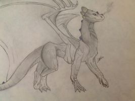 Anatomy sketch by Dragon-of-Faith