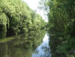 river in gyula by ogika