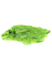 Light patch of stock grass png by madetobeunique