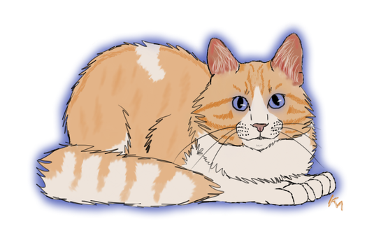 Cat by willowleaf11